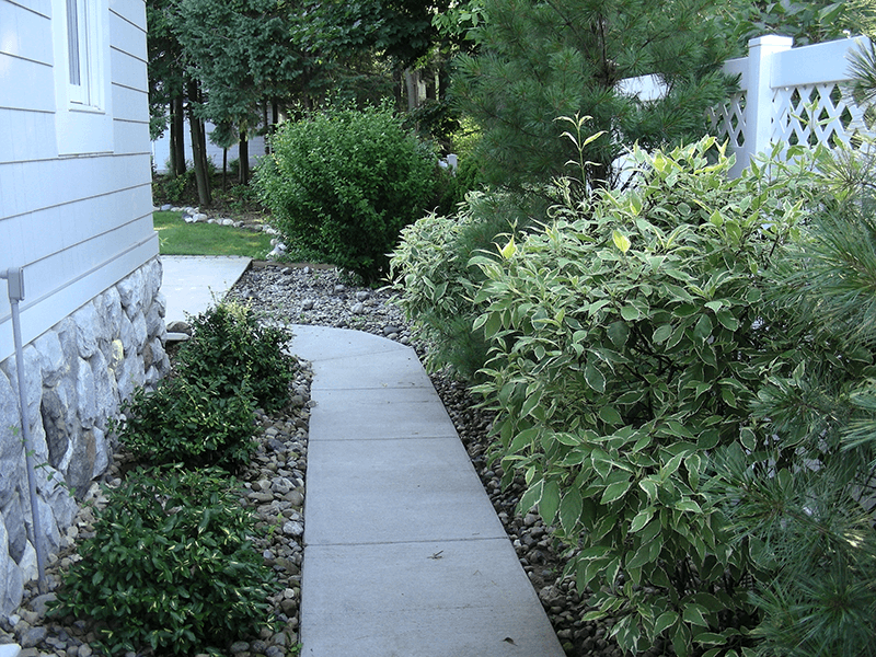 side yard landscape